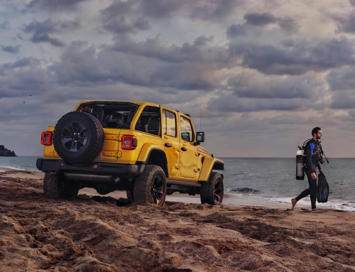 Jeep | Wrangler 2019